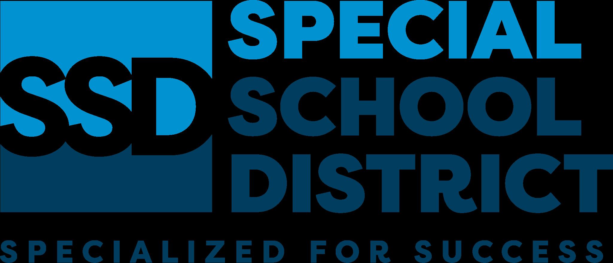 SSD 2020 Logo