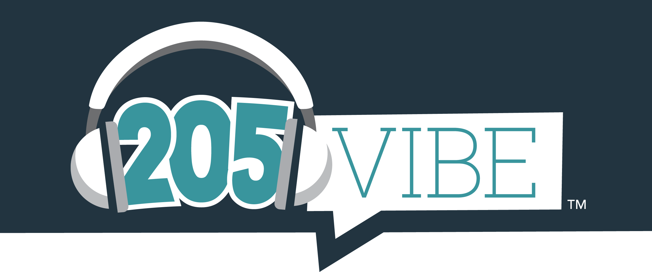 205 VIBE logo
