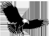 eagle mountain elementary eagle logo