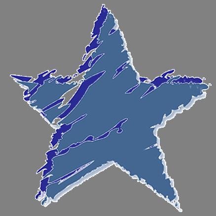 saginaw elementary star logo